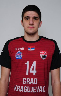 Aleksa Matic
